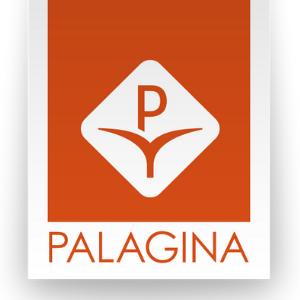 Vendita e installazione tende e zanzariere Palagina